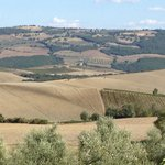 Views of Tuscany on our tour