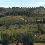 Views of Tuscany on our tour - from the abbey