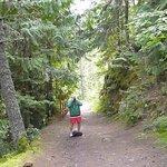 a visit to fletcher falls
