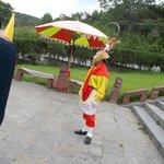 Monkey king costumer