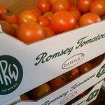 Local Tomato Delivery
