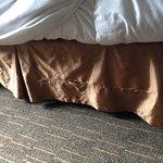 Torn bedding