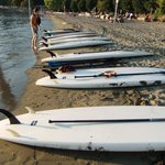 Standup Paddle Board Rentals