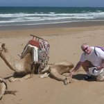 The beach beneath the sand dunes with friendly camels!