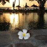piscine coucher soleil