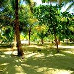 Beautiful grounds at Rendevous Key