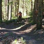 Trail 142