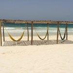 best hammocks in town!