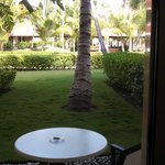 Backyard view from Jr. Club Suite with Jacuzzi