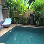 Private garden and pool are luxury