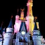 Castle lit up with color