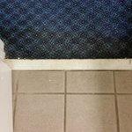 Dirty bathroom tile