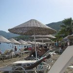 sandy beach area with sunbeds and umbrellas