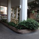 Area outside Entrance Lobby