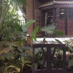 Jardin trés beau