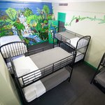 The 10 Bed Jungle Room