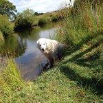 Merryck at the lake :)