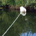 Merryck having a paddle ��