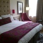 Hotel Indigo Standard Room