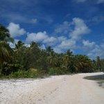 long plage pour marcher