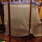 Mosquito net to sleep under