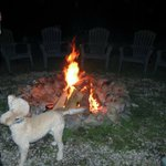 Great fire pit area, owners dog.