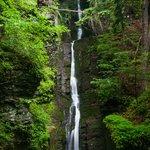 Silvertread Falls