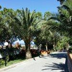 Promenade in die Garten