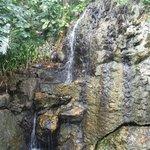 Waterfall on Resort