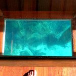 The glass floor - so yopu can see the fish