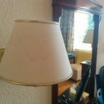 Stained lamp shades