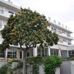 Photo de Alkyonis Hotel