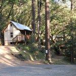 Alle Hütten liegen idyllisch am Berghang mitten im Wald