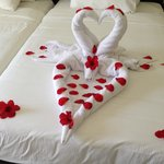 romantic design