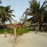 Beach view of cabanas