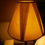 trashed lampshade