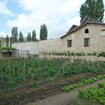 Old Greek House garden