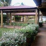 Foto de Hotel Bamboo