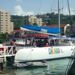 Chukka Catamaran (Party Sail Boat, snorkeling and Dunn's Fall)