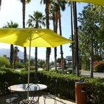 Palmumstandene Terrasse vor Hotel