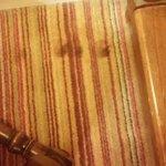 Staining in carpet