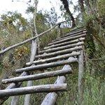 steep climbs (too steep for steps)