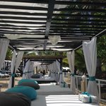 canopy beds at VIP Beach