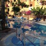 Skøn pool og fantastisk frodighed
