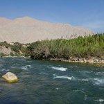 a pocos pasos uno puede estar en la rivera del río Cañete.