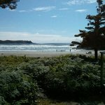 Our first Trip to Tofino