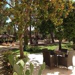 Gepflegter Park mit Minigolf und Tischtennis