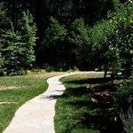 Beautiful walkways