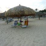 Our beach spot daily
