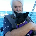 Puppy love on board BMS